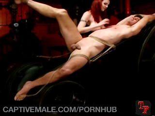 Cautivo a una dominatrix