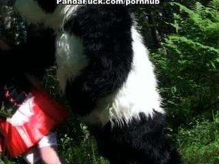 Poco montar a caballo rojo follando con panda en la madera