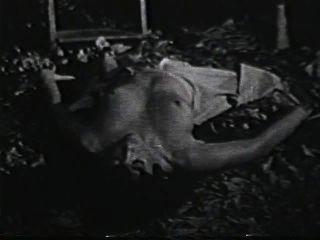 Softcore nudes 590 escena de los años 70 2