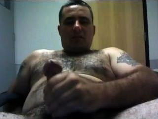 Padre oso
