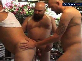 Tres osos grandes