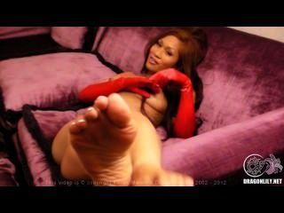 Dragonlily sexy dedos del pie