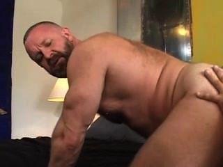 Dos osos musculares