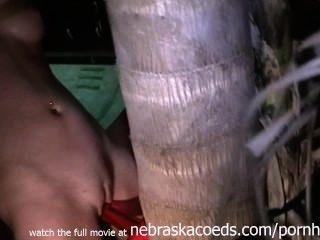 Correa de sexo con un árbol de vídeo en casa