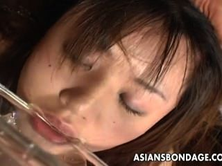 Bebé esclavo asiático kinky que lame y que bebe el pis.