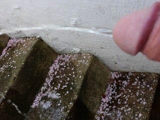 Orinando en la escalera