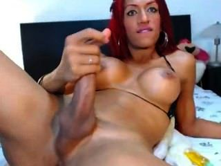 Transexual sexy se levantó