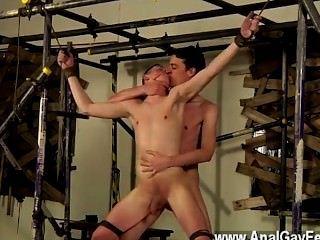 Gay jocks sean es como muchos de los chicos autorizados, sólo quiere un
