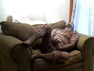 Caliente tigre duro tirones fuera mientras estaba acostado en una silla grande