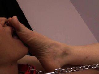 Esclavo brandi adora claires pies