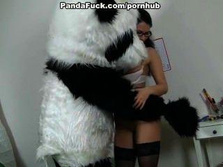 Profesor joder enorme oso de juguete