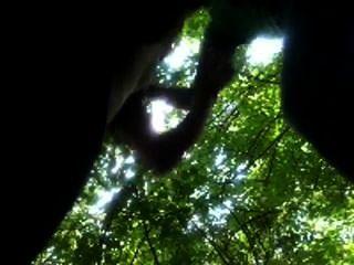 Chico aficionado chupa fuera colegio dude en el parque de bosques