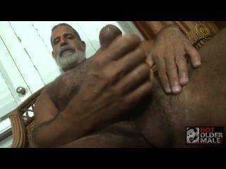 Husbear playin iwth polla