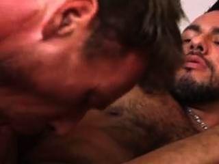 Ani macho vs delicioso mamífero = short butt hole sweet = rimming gay pantalones cortos