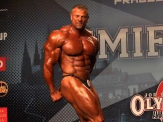 Musclebull, gris, brillante, posers
