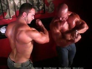 Aceite musculoso