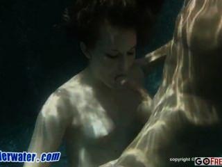Sexo submarino charlie maverick newbie