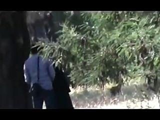 9hab sexo algerie