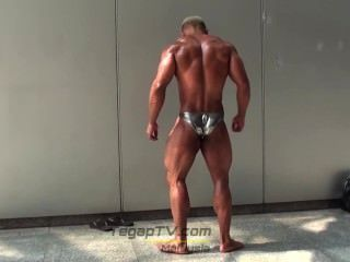 Musclebull, brillante, plata, posers