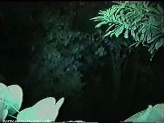 Pareja japonesa follando en el parque público