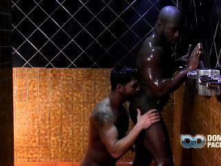 Fiesta gay para dallas
