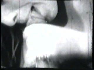 Ciervos clásicos escena 4 de los 50s y 60s