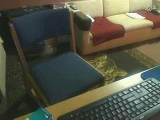 Compañero de habitación atrapado en spycam