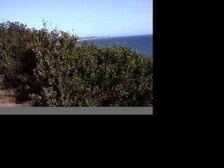 Malibu sexo en la playa